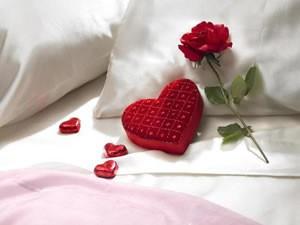 romantic rose on pillow